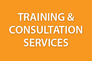 Training & Consultation Services
